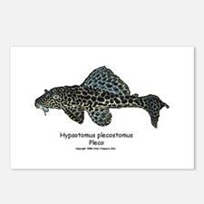Hypostomus plecostomus Postcards (Package of 8)