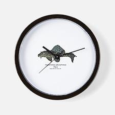 Hypostomus plecostomus Wall Clock