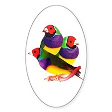 Gouldian Finch Oval Stickers