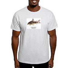 Corydoras paleatus (Cory Cat) Ash Grey T-Shirt