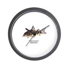 Corydoras paleatus (Cory Cat) Wall Clock
