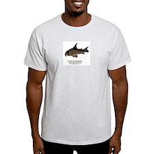 Corydoras leucomelas (Cory Ca Ash Grey T-Shirt