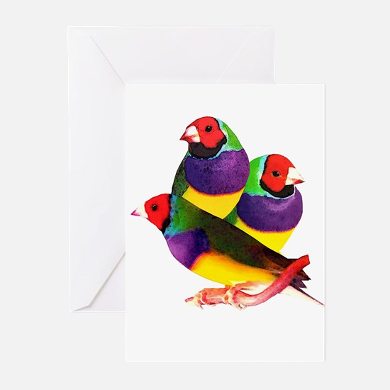 Gouldian Finch Greeting Cards (Pk of 10)