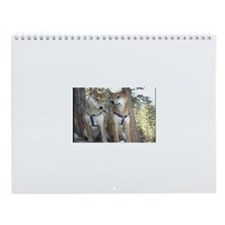 Funny Images of puppies Wall Calendar