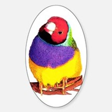 Gouldian Finch Oval Decal
