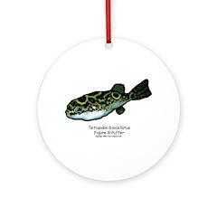 Tetraodon biocellatus Ornament (Round)