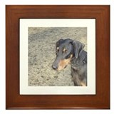 Doberman pinscher Framed Tiles
