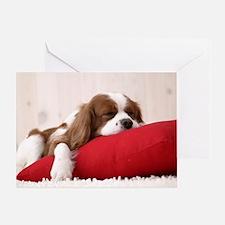 SLEEPING SPANIEL PUPPY Greeting Card