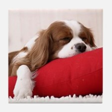 SLEEPING SPANIEL PUPPY Tile Coaster
