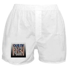 FAN 3 Boxer Shorts