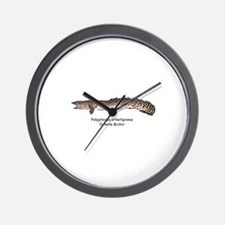 Polypterus ornatipinnis Wall Clock