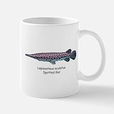 Lepisosteus oculatus Mug