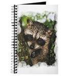 Baby Raccoon Journal