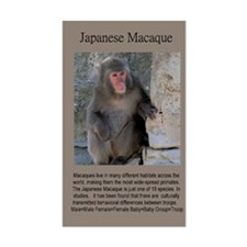 Japanese Macaque Vinyl Decal