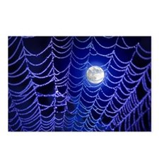 Spider Web Postcards (Package of 8)