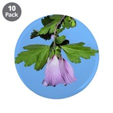 "Rose of Sharon on Blue 3.5"" Button (10 pack)"