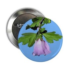 "Rose of Sharon on Blue 2.25"" Button"
