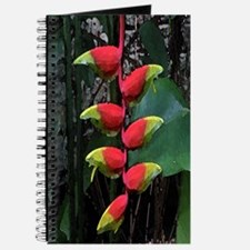 Heliconia Journal