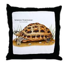 Spider Tortoise Throw Pillow