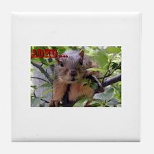 Cute Add squirrel Tile Coaster