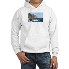 Cute Split rock lighthouse Hoodie