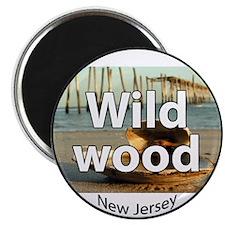 wildwood2circle Magnets