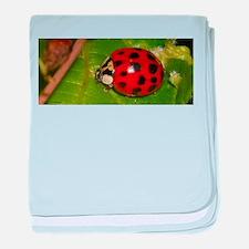 Ladybug on Leaf baby blanket