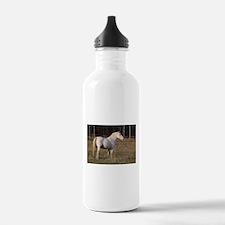 """""""Knabstrupper 6"""" Water Bottle"""