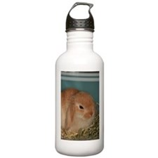 """Bunny 4"" Water Bottle"