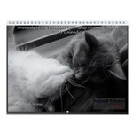 2011 Franklin Township Animal Shelter Calendar