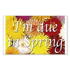 I'm due in Spring Rectangle Decal