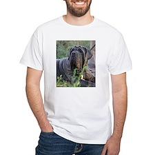 LC mastini Shirt