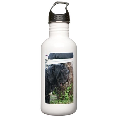 LC mastini Stainless Water Bottle 1.0L