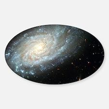 Spiral Galaxy Oval Decal
