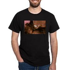 Trifid Nebula Black T-Shirt