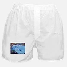 Dolphin Art Boxer Shorts