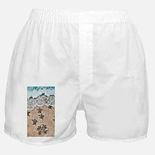 Turtle Hatchlings Boxer Shorts