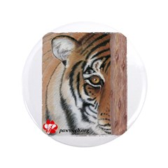 PAWS Tiger 3.5