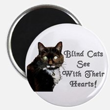 Blind Cats See Magnet