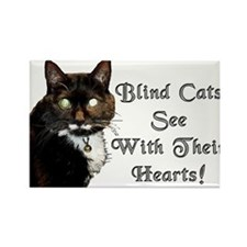 Blind Cats See Rectangle Magnet