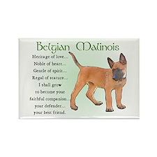 Belgian Malinois Rectangle Magnet (10 pack)