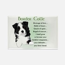 Border Collie Rectangle Magnet (10 pack)