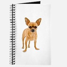 Chihuahua Stand Journal