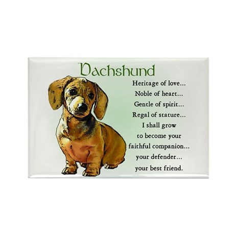 Dachshund Puppy Rectangle Magnet (100 pack)
