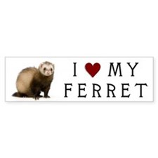 heartmyferret Bumper Bumper Sticker