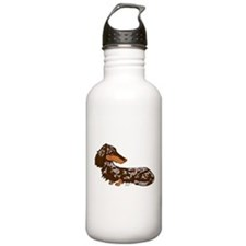 Chocolate Dapple Dachshund Sports Water Bottle