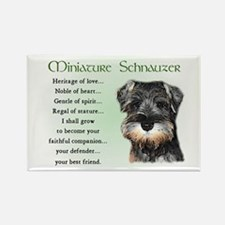 Miniature Schnauzer Rectangle Magnet (10 pack)