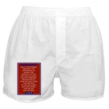 Funny Sanity Boxer Shorts