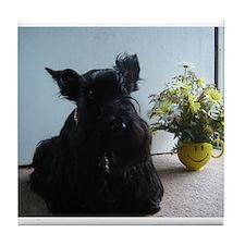 Funny Scottie puppy Tile Coaster