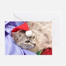 silver somali cat christmas Card